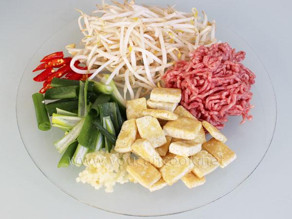 Tofu Rezept - Mit Sojasprossen und Hackfleisch1